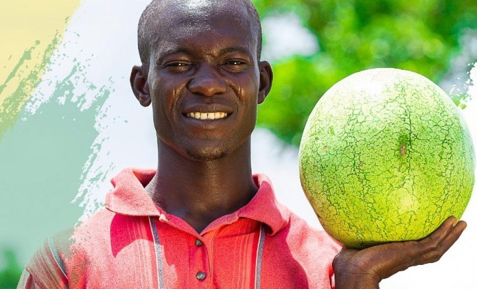 walewale melon_cropped